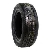 NEXEN ROADIAN-HP 255/30R22 95V XL