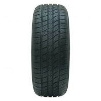 RADAR Dimax AS-8 225/60R16 102V XL