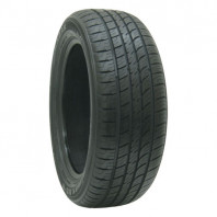 RADAR Dimax AS-8 245/45R18.Z 100W XL